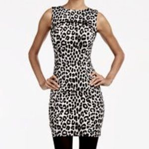 Michael Kors Petite Cheetah Sheath Dress